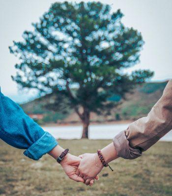 Un couple se tenant la main avec un arbre en fond.